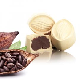 Witte cacao ganache (ref.41)