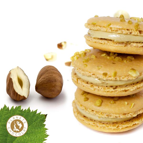 Hazelnut macaron