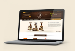 Nuestra página web, disponible ahora en español!