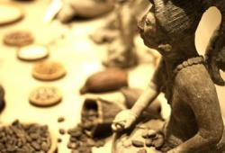 Quelles sont les origines du chocolat ?